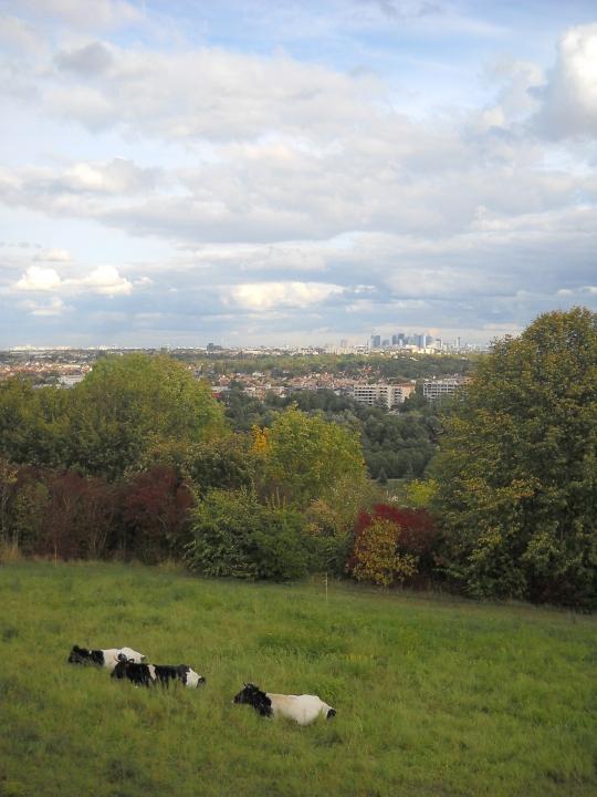 Ferme Seine-Ouest - 004