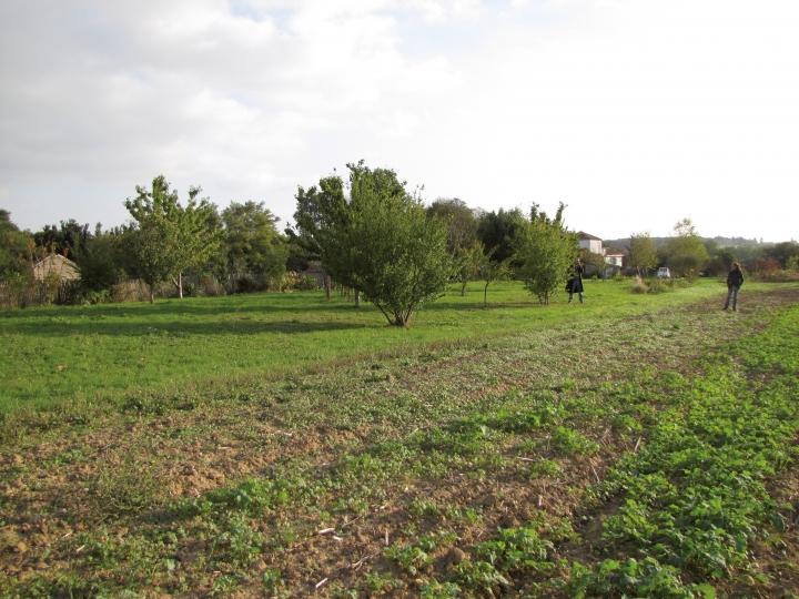 Jardin D ecotones - 004